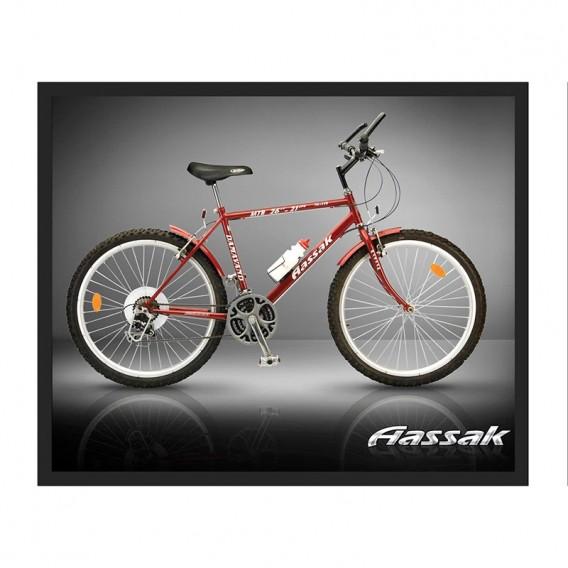 دوچرخه کوهستان آساک 26 دماوند پژویی ۲۱ سرعته Aassak 26-21 Peugeot