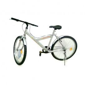 دوچرخه کوهستان آساک 26 دماوند وای فریم تک سرعته Aassak 26-1 Y Frame