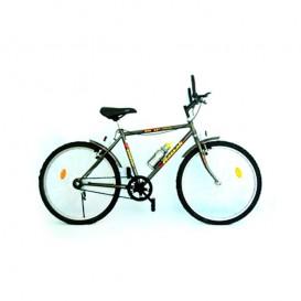 دوچرخه کوهستان آساک 24 کوهسار تک سرعته Aassak 24-1 Koohsar