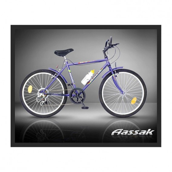 دوچرخه کوهستان آساک 24 کوهسار ۶ سرعته Aassak 24-6 Koohsar