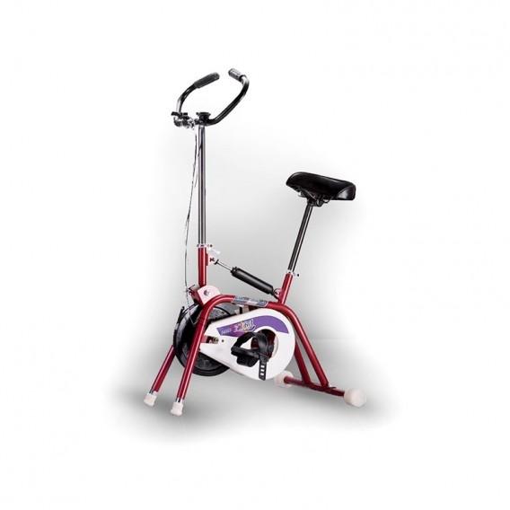 دوچرخه ثابت آساک زیبا Aassak Ziba