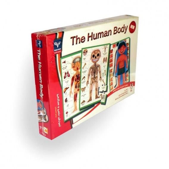 مجموعه پازل بدن انسان